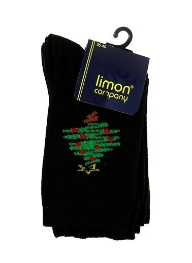 Limon Company Soket Çorap Siyah